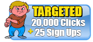 20K TARGETED USA HITS AND 200 FAST SIGN UPS $11.99